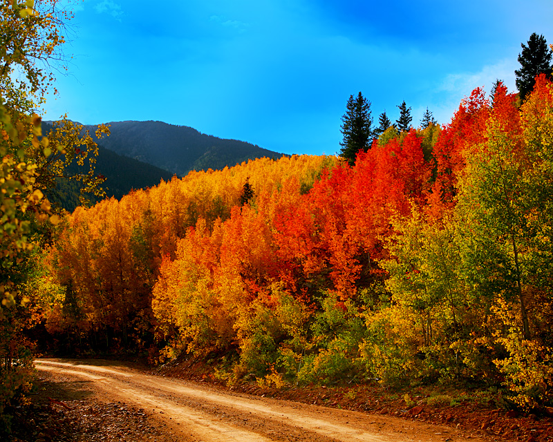 colorado in the fall vacation world